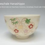 Hanashippo
